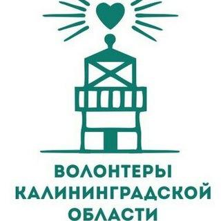 Волонтеры Калининградской области