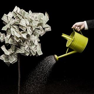 Бизнес и деньги