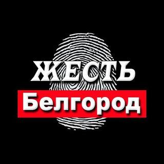 Жесть Белгород