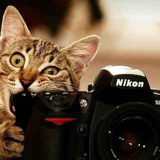 Группа для фотографов